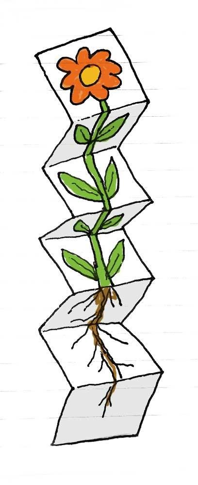 grow-flower-craft