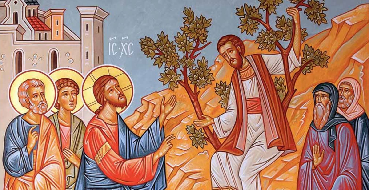 Jesus and Zacchaeus – Resource for Kids Ministry
